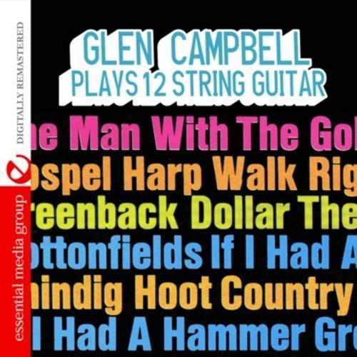 Plays 12 String Guitar
