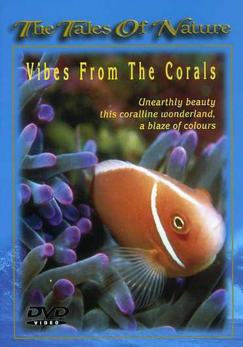 Vibes from Corals [Import]