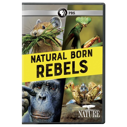 Nature: Natural Born Rebels
