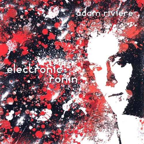 Electronic Ronin