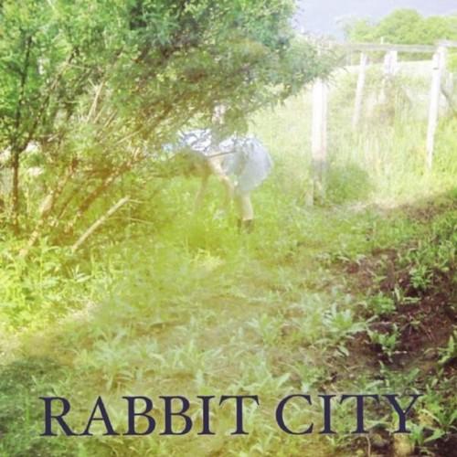 Rabbit City