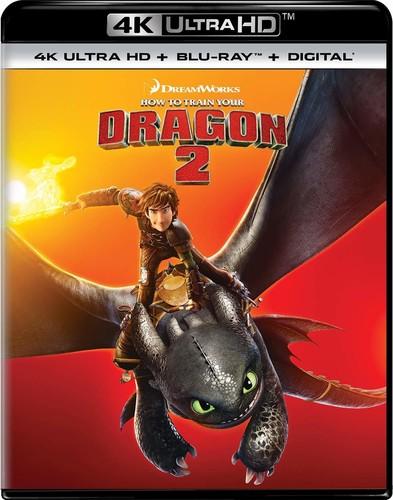 How to Train Your Dragon 2 [4K Ultra HD Blu-ray/Blu-ray]
