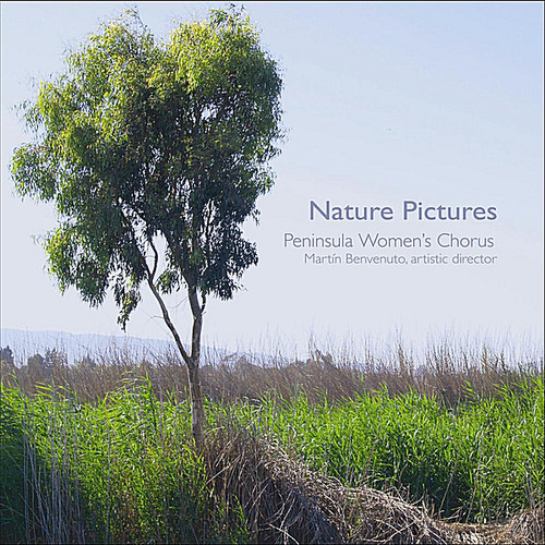 Nature Pictures