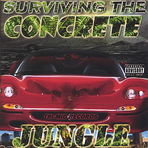 Surviving the Concrete Jungle