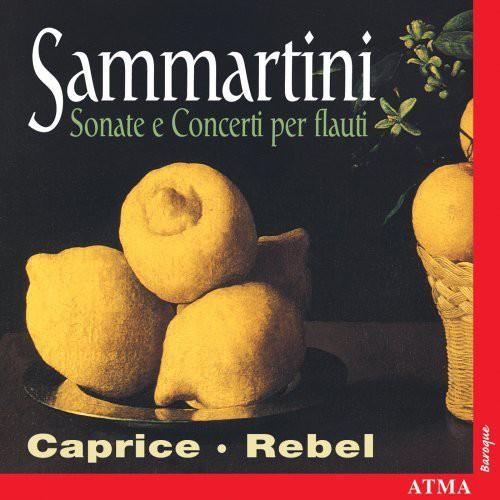 Flute Sonatas & Concerti